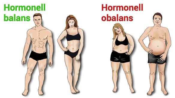 Hormonell-balans