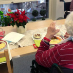 Expert sågar maten på äldreboenden
